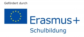 Erasmusgefoerdert_rgb