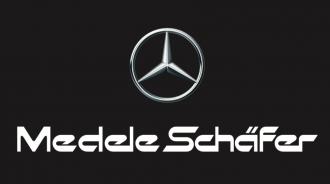 MendeleSchäfer